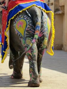 Elephant @rse